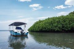 Boat on Bama Beach. Boat laid on Bama Beach in Baluran National Park, Situbondo, Indonesia Royalty Free Stock Photos