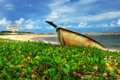 Boat on the beach Royalty Free Stock Images