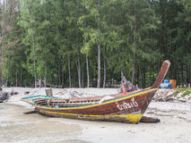 Boat on the beach. And pine tree Stock Photos