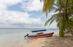 Boat on the beach under palm tree. Boat at the Starfish beach under palm tree, archipelago Bocas del Toro, Panama Royalty Free Stock Photos