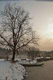 Boat beneath a tree on winter lake at sunset Stock Photography
