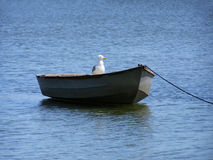 Boat with bird Royalty Free Stock Image