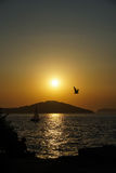 A boat and a bird at sunset Stock Image