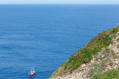 Boat and blossoming coast. Royalty Free Stock Image