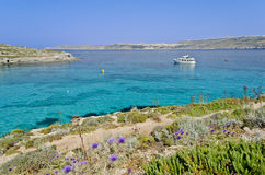 Boat in the Blue Lagoon - Malta. Clear blue seas surrounding the island of Comino in Malta Stock Photo