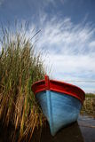 Boat in bulrushes  Royalty Free Stock Images