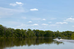 Boat on calm scenic river on a bright sunny day. A boat driving on a scenic river leaves a wake on the calm water surface during a bright clear, sunny day in Royalty Free Stock Photo