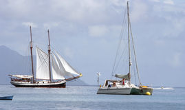 boat catamaran jet sailing ski 免版税图库摄影