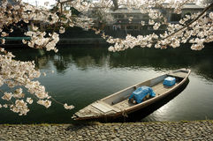 Boat with cherry blossom Royalty Free Stock Photos