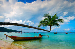 Boat and coconut on the island Stock Photography