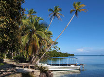 Boat with coconut trees Stock Photo