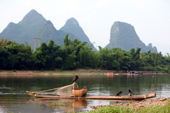 Boat with cormorants birds, traditional fishing in China Royalty Free Stock Images