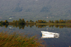 Boat in country lake. A small white boat floating in a quiet country lake stock image