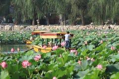 Boat crusing at Beihai lake in Beijing. When lotus flowers are blooming Royalty Free Stock Image