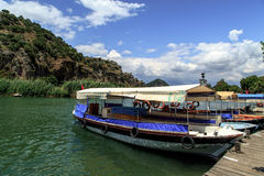 Boat on Dalyan Coastline Stock Image