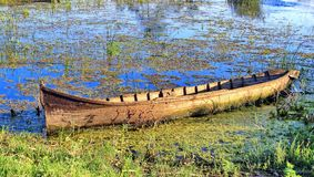 Boat in the Danube Delta stock photos