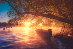 Boat at dawn. Misty lake view: wooden boat under the tree, soft sunrise light