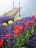 Boat Dock at Swiss lake Royalty Free Stock Photography