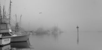 Boat Docks Stock Images