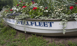 Boat Filled with flowers Royalty Free Stock Image