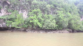 Boat Floats on the River of Mangroves stock footage