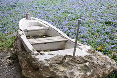 Boat in a flower field Royalty Free Stock Photo