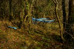 Boat in forest. Deserted blue row boat among trees Stock Images
