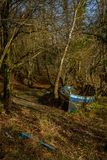 Boat in forest. Deserted blue row boat among trees Royalty Free Stock Photography