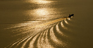 Boat on a golden river. A boat moving through a golden river in the morning Stock Image