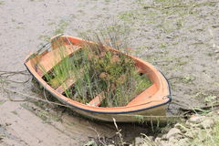 Boat with grass Royalty Free Stock Photo