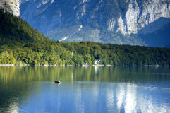 Boat on Hallstattersee Stock Images