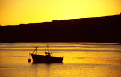Boat in the harbour with golden light Royalty Free Stock Image