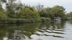 Havel river. boat is driving, passing by typical landscape with meadows and willow tries. Havelland region. Germany. Boat on Havel river. boat is driving stock video