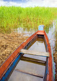 Boat in a high cane Stock Photos