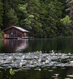 Boat house on lake. Boat house situated on a calm lake in the alps, with floating lilies in the foreground Stock Photo