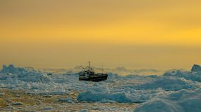 Boat in between Icebergs in Greenland. During sunset stock image