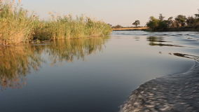 Boat on Kwando river stock video footage