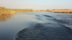 Boat on Kwando river stock video