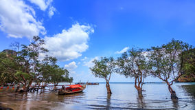 Boat in Lagoon. A Boat in Silent Lagoon Stock Photography