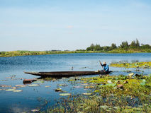 Boat in the lake. Bright day with the fisherman Royalty Free Stock Photos