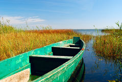 Boat on lake and cane Royalty Free Stock Photos
