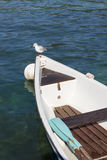 Boat on the lake with gull Stock Photos