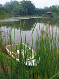 Boat by lake & reeds. A little boat rests by the side of a lake, half hidden among tall green pond reeds.  In the background is dense vegetation of a Stock Photos