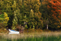 Boat on lake Royalty Free Stock Image