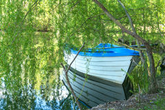 Boat on a lake under willow tree stock images