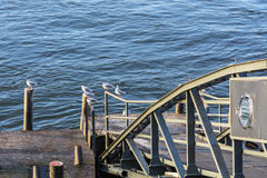 Boat landing stage on the Rhine Royalty Free Stock Photos