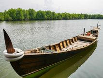 Boat in Mangrove River Forest Conservation. Boat in Mangrove Forest Conservation in Lubuk Kertang, North Sumatra, Indonesia Royalty Free Stock Image
