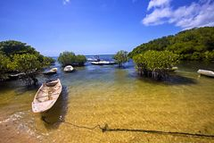 Boat in a mangrove,  Lembongan, Indonesia Royalty Free Stock Photography