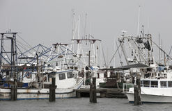 Boat Marina Stock Image