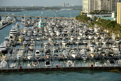 Boat marina in Miami Beach, Florida Royalty Free Stock Photography